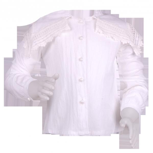 Фото: Блузочка с откидным воротником и кружевом (артикул Z 30084-white)