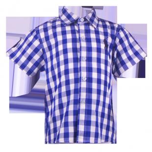 . Яркая рубашка Ralph Lauren для мальчика